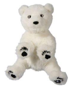 Pui de Urs Polar Interactiv