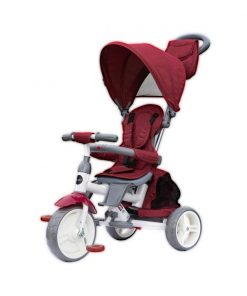 Tricicleta multifunctionala Evo Coccolle, Violet
