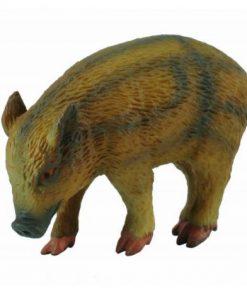 Porc mistret mancand - Collecta