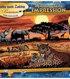 Set Pictura pe numere - Safari African