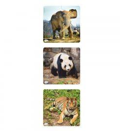 Set 3 puzzle progresive Animale