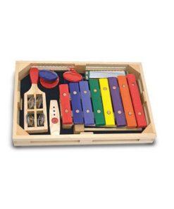 Set Instrumente Muzicale Incepatori